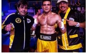 In Francia, Austria e USA la boxe italiana sul ring